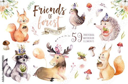 Fotografie, Obraz  Cute watercolor bohemian baby cartoon hedgehog, squirrel and moose animal for nursary, woodland isolated forest illustration for children