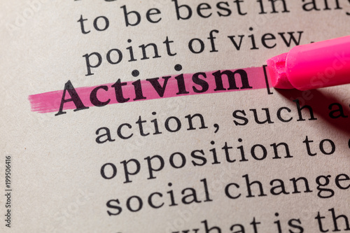 definition of activism Canvas Print