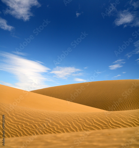 Poster Droogte landscape in evening desert