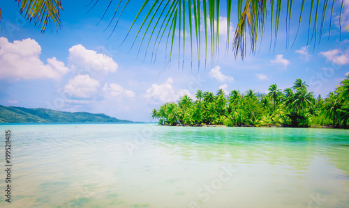 Summer paradise with shallow water and palm trees. Idyllic view of Bora Bora Island.