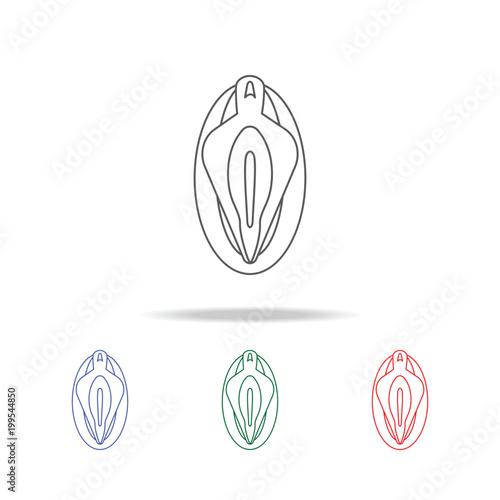 Fotografia, Obraz  Vagina line  icon