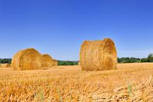 Bale Of Hay In A Field Under Blue Sky