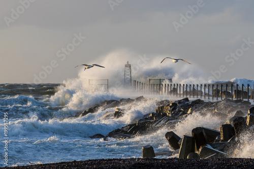 Mole von Vorupør, Dänemark bei Sturm mit Möwen Fototapet