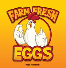 Funny Sweet Chicken Show Egg W...