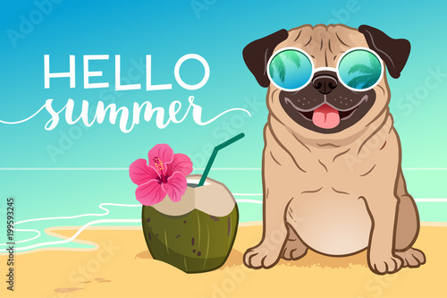Pug dog wearing reflective sunglasses on a sandy beach, ocean in background, green coconut drink, Hello Summer text Canvas Print