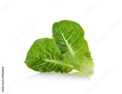 Fototapeta fresh baby cos (lettuce) on white background