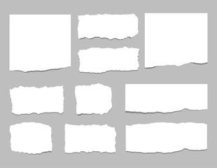 Torn sheets of paper. Torn paper strips. Vector illustration