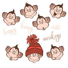 Isolated Funny Faces Monkeys.V...