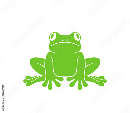Canvas-taulu Red eye frog. Tree frog. Isolated frog on white background
