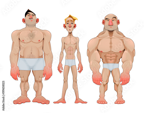 In de dag Kinderkamer Three types of caricatural male anatomies