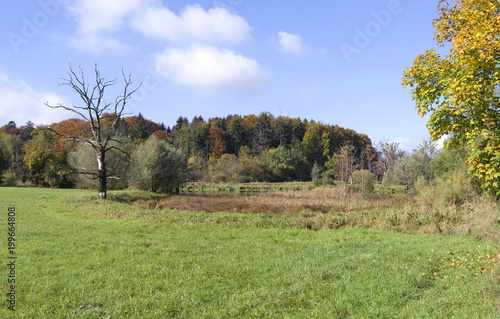 Staande foto Pistache Andechs / Germany: Pond landscape Seacht'n in Upper Bavaria