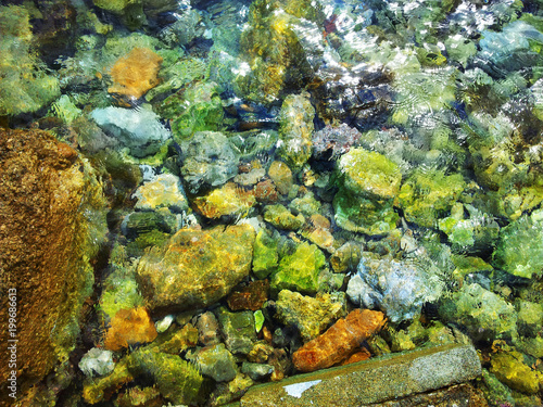 Piedras de colores en agua transparente Canvas Print
