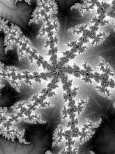 Fractal In A Black - White Col...