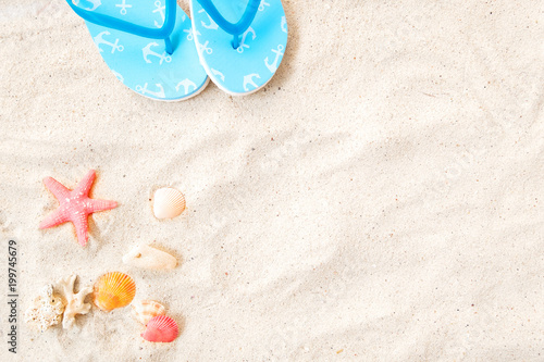 Fotografia  Beach background - top view of beach sand with shells, tarfish and slipper