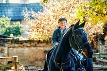 Cheerful Boy Riding A Horse, W...