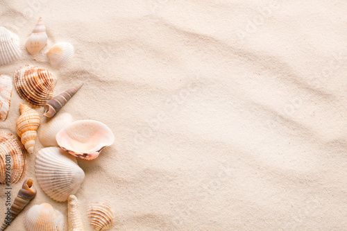 Canvas-taulu sand with seashell and starfish as blank textured background