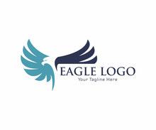 Eagle Bird Logo Vector Template. Business Logo Concept