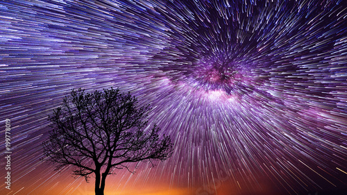 Fototapeta Spiral Star Trails over silhouettes of trees, Night sky with vortex star trails