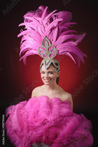 Montage in der Fensternische Karneval Beautiful girl in carnival costume with rhinestones and pink feathers.