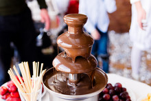 Vibrant Picture Of Chocolate F...