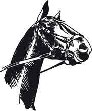 Horse With Bridle, Retro Vecto...
