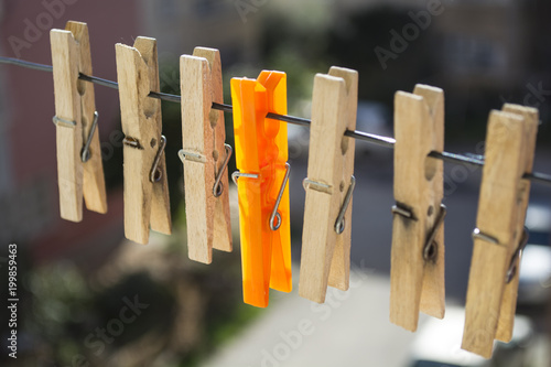 Fotografie, Obraz  wooden laundry latches on a rope and an orange laundry latch between the latches