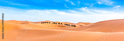 Staande foto Kameel Abstract nature background. Morocco.