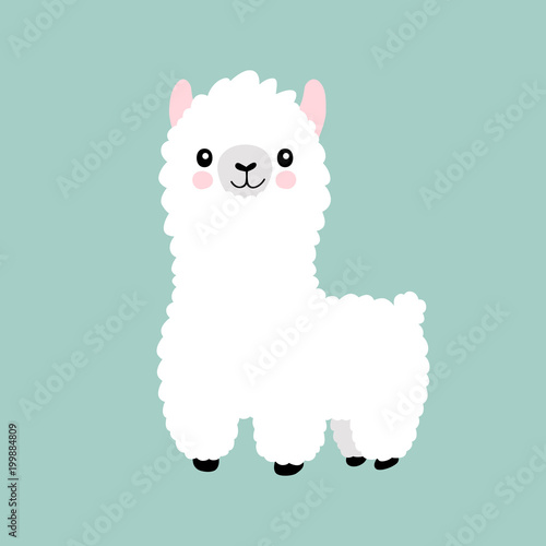 Llama cartoon cute alpaca. Lama animal vector isolated illustration. Cute funny hand drawn art. Design for card, sticker , fabric textile, t shirt. Children, kid modern trendy style © prostoira777