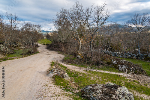 Foto op Aluminium Bleke violet Landscape with green grass, rocks and road