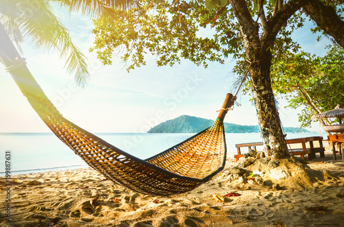 Fotografie, Obraz  Empty hammock between palm trees on tropical beach