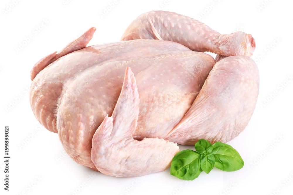 Fototapeta Fresh raw chicken and basil isolated on white background.