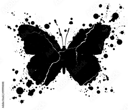 Photo sur Toile Papillons dans Grunge Grunge butterfly shape and paint blobs splattered