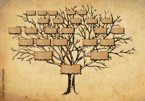Fotografie, Obraz  family tree illustration