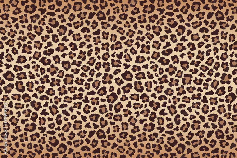 Fototapety, obrazy: Leopard fur beige brown texture with dark border. Vector
