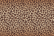 Leopard Fur Beige Brown Texture With Dark Border. Vector