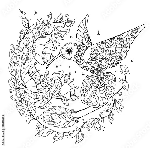 hummingbird coloring book - Buy this stock vector and ...