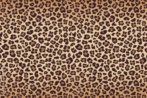 Photographie Leopard fur beige brown texture with dark border. Vector