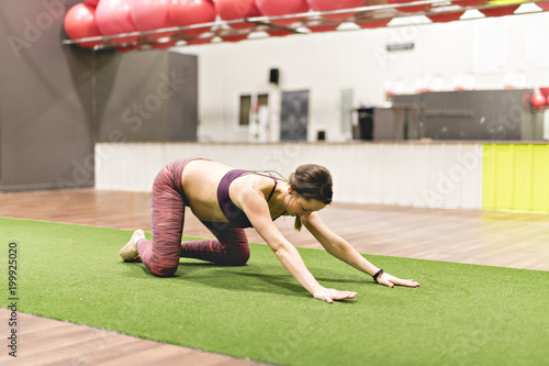 Pregnant woman is doing exercises at the gym Poster