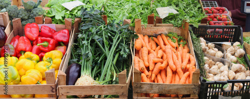 Foto auf Gartenposter Gemuse Fresh vegetables in market crates