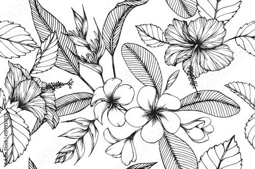 Hawajski deseniowy bezszwowy tło z kwiatu i liścia rysunkową ilustracją.