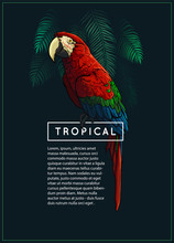 Trendy Vector Tropical Background. Jungle Palm Tree Leaves, Exotic Bird And Text On Black Background. Jungle Theme Design Template For Banner, Poster, Flyer. Vintage Style Graphic. EPS 10.