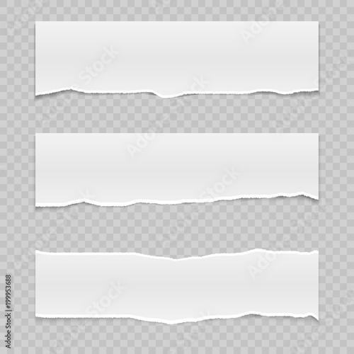 Fotografía  ripped paper