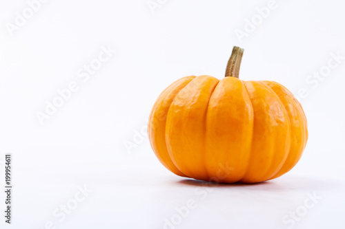 fresh pumpkins Canvas