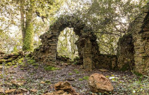 Staande foto Rudnes Ruines d'une ancienne chapelle dans les bois du Veillon à Talmont Saint-Hilaire (Vendée, France)