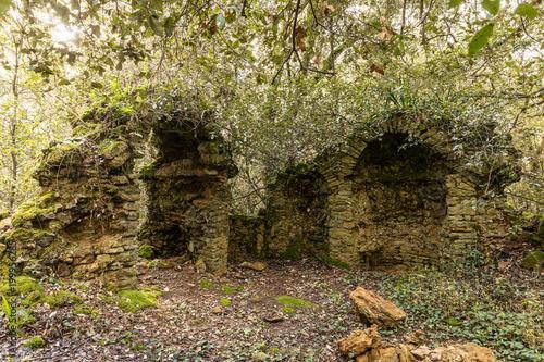 Ruines d'une ancienne chapelle dans les bois du Veillon à Talmont Saint-Hilaire Poster