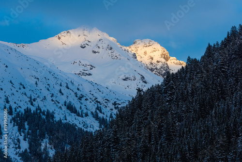 Alpenglühen im Winter Poster