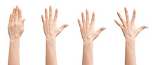 Set Of Female Hands