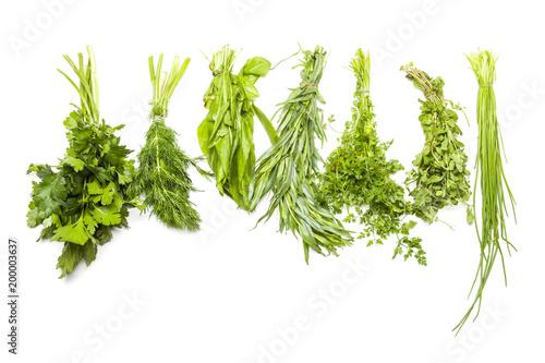Foto auf Gartenposter Aromastoffe Zutaten für frankfurter grüne Soße