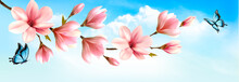 Nature Spring Background With Beautiful Magnolia Branches And Butterfies. Vector.
