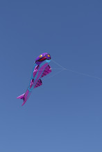 Kite Competition On A Sunny Ho...